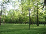 Nifong Park